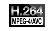 H.264 / MPEG-4 AVC (MP4)